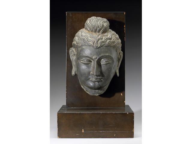 A large Ghandaran carved stone head of Buddha