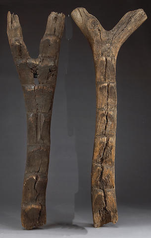 Two Dogon ladders