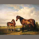 two horses in a field.  o/c.