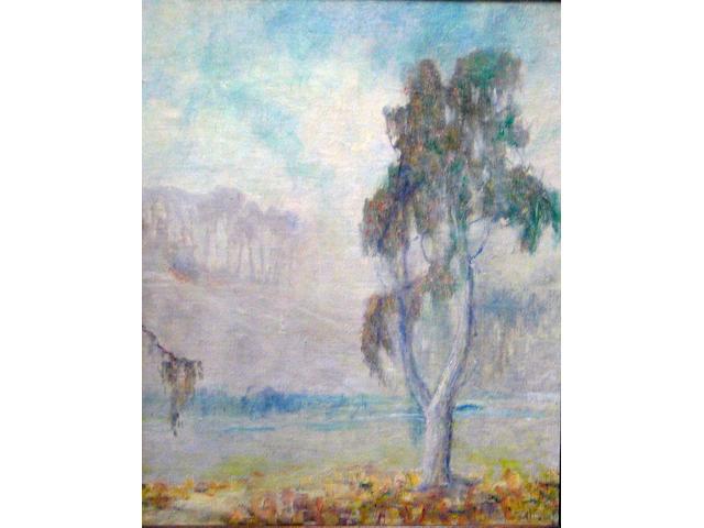 William Posey Silva (American 1859-1948) Eucalyptus in fog (No.38) 20 x 16in