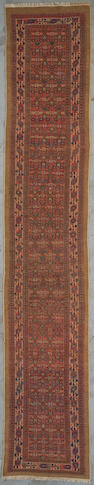 A Serab runner Northwest Persia, Size approximately 11ft 1in x 2ft 6in