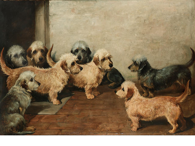 John Emms (British 1843-1912) Eight Dandie Dinmonts 34 x 50 in. (86.5 x 127 cm.)