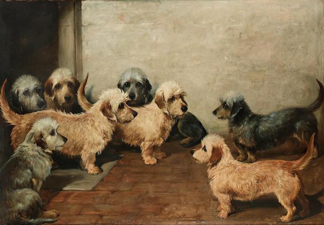 John Emms (British 1843-1912) Eight Dandie Dinmonts 34 x 50 in. (86.5 x 127 cm.)