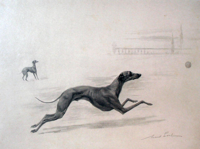 Maud Earl (British 1863-1943) Italian Greyhounds 9 x 12 1/2 in. (22.9 x 31.4 cm.)