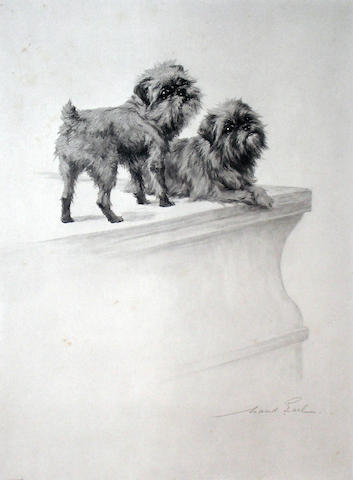 Maud Earl (British 1863-1943) Pair of Brussels Griffons 13 x 9 in. (33 x 22.8 cm.)