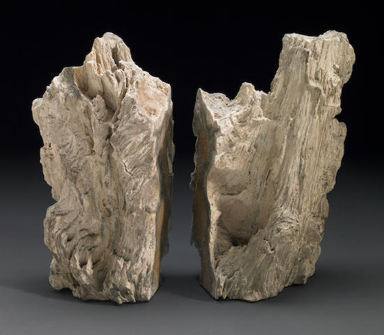 Pair of Petrified Wood Bookends
