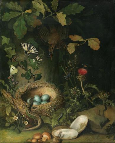 Austrian School (19th century) Bird Defending its Eggs against a Lizard 21 1/4 x 17in (54 x 43.2cm)