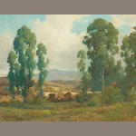 Percy Gray (1869-1952) A View Through the Eucalyptus Trees 16 x 20in