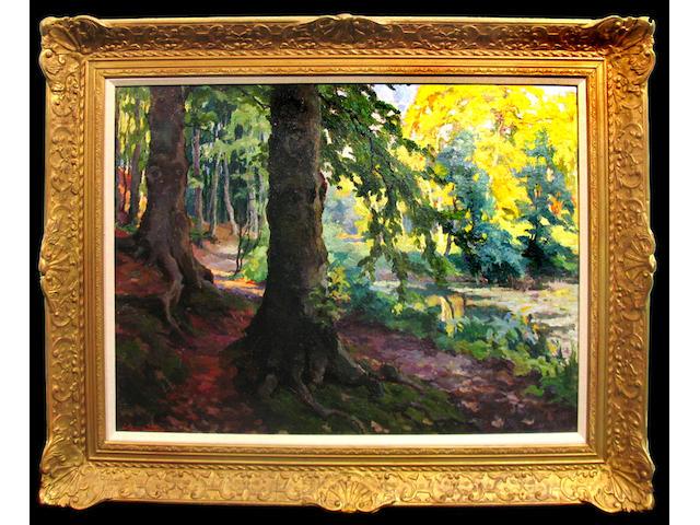 Jean Stevan (Belgian 1896-1962) A sunlit wooded landscape 23 1/2 x 31 3/4in