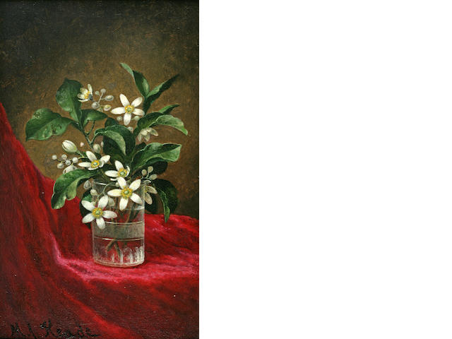 Martin Johnson Heade (1819-1904) Orange Blossoms in a Glass 15 x 9in