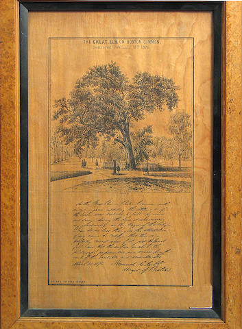 [BOSTON COMMONS—GREAT ELM.]
