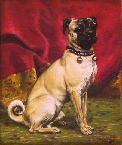 John Martin Tracy (American, 1843-1893) Seated Pug 12 x 10 in. (30.5 x 25.4 cm.)