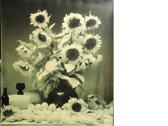 Andre De Dienes, Flower;