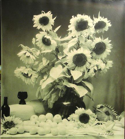 Andre de Dienes (American, 1913-1985); Sunflowers;