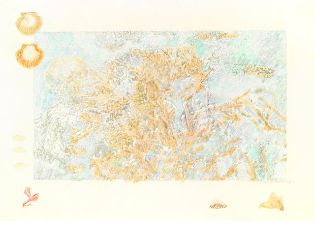 Ann McCoy, Reef for Jim Butler, 1976, colored pencil on paper