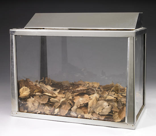 Allen Ruppersberg, Untitled (Aquarium), 1969, metal, glass, leaves and dirt