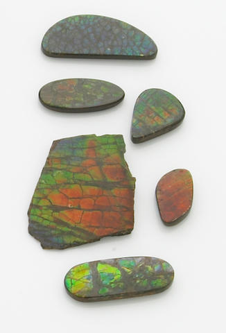 Group of Ammolite Cabochons