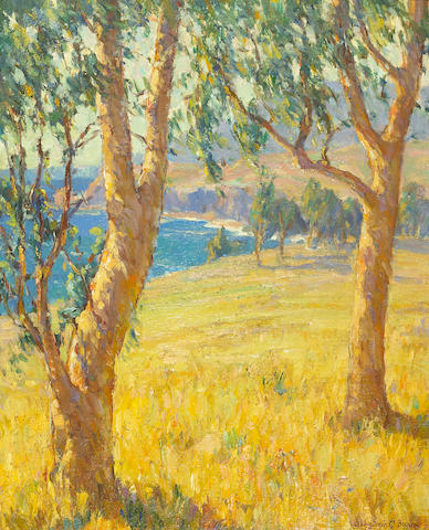 Benjamin C. Brown (1865-1942) Eucalypti near Arch Beach, California 20 x 16in