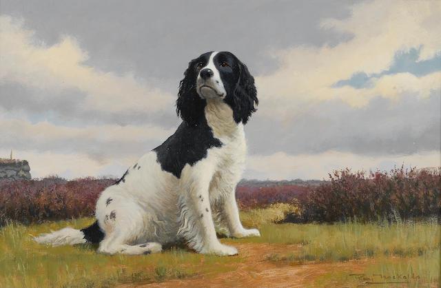 Roy Nockolds (British, 1911-1979) Spaniel 14 x 21 in. (35.5 x 53.5 cm.)