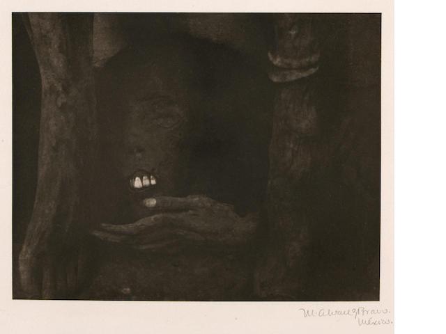 Manuel Alvarez Bravo (Mexican, 1902-2002); Retrato Póstumo (Posthumous Portrait), from Platinum Portfolio;