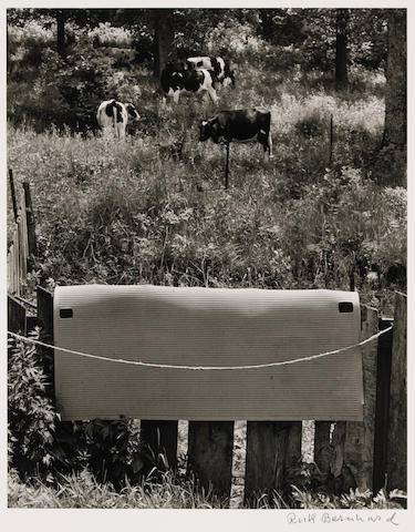 Ruth Bernhard (American, 1905-2006); Wisconsin Meadow;