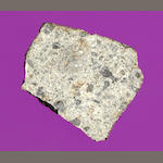 Siena Meteorite — Complete Slice of the First Scientifically Accredited Rock from Space