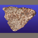 Fragment of the Valera Meteorite — The Only Documented Fatal Impact