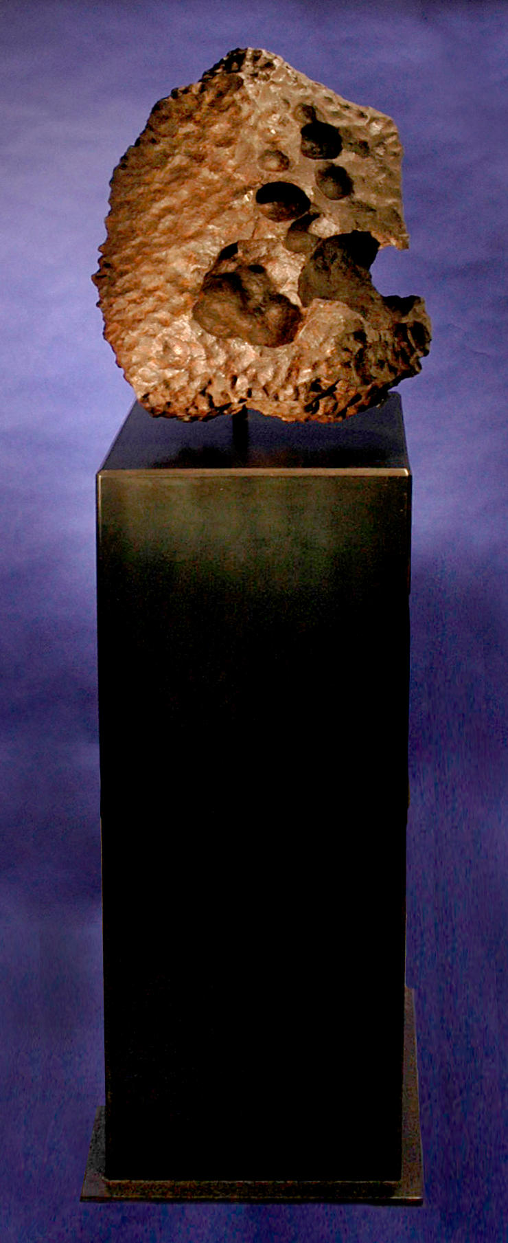Aesthetic Gibeon Meteorite —Among the Finest Iron Meteorites and a Matchless Objet d'Art
