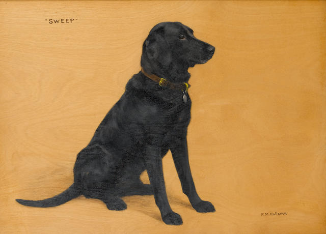 Frances Mabel Hollams (British, 1877-1963) Portrait of a Labrador 'Sweep' 13 x 17 1/2 in. (33 x 44.5 cm.)