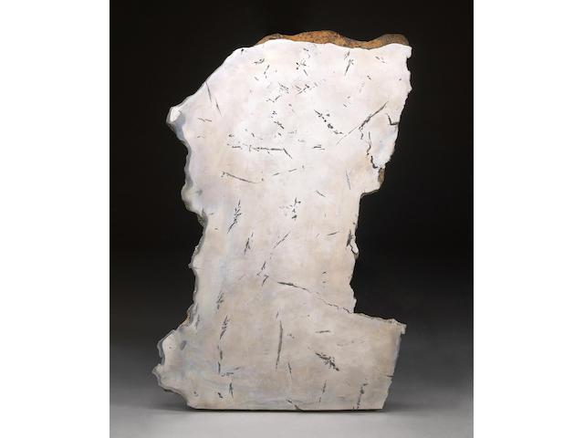 Polished Seymchan Meteorite  Complete Slice