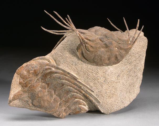 Large, Three-Dimensional Trilobite