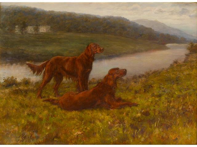 Maud Earl (British, 1863-1943) Irish Setters in a landscape