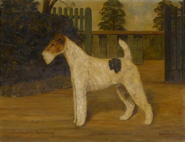 William Lucas Lucas (British, 20th century) A portrait of the champion Airedale 'Crackley Surething'