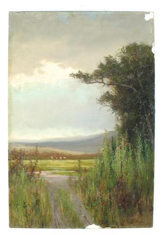 Frederick Ferdinand Schafer (German/American, 1839-1927) Spring on Alameda Point 24 x 16in unframed