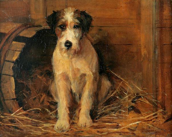 Samuel Fulton (British, 1855-1941) Portrait of a dog