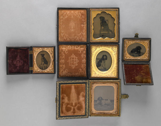 Group of five cased ambrotypes of dogs<br/>19th century