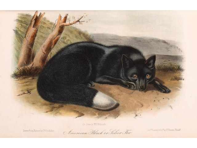 AUDUBON, JOHN JAMES 1785-1851.  &  BACHMAN, JOHN.  1790-1874.
