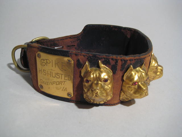 American 20th century leather and gilt metal collar