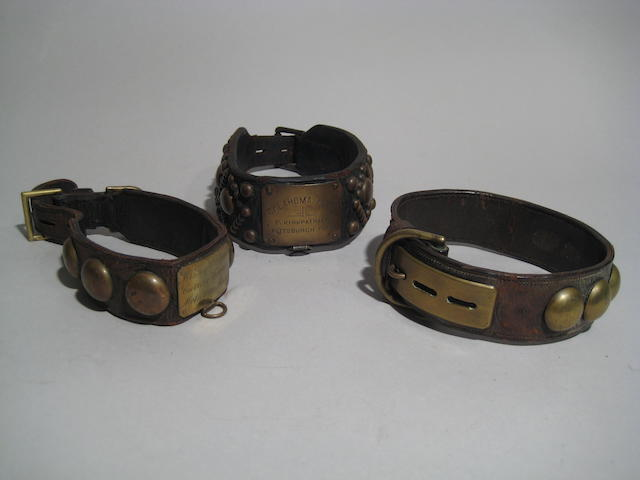 Group of three American early 20th century leather and brass mounted collars