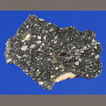 Rare Complete Slice of the Newest Lunar Meteorite — An Authenticated Piece of the Moon
