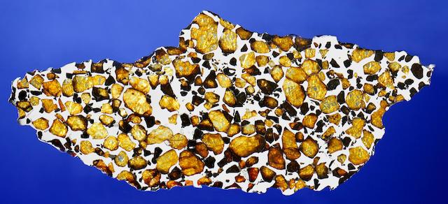 Imilac Meteorite — Complete Slice of a Meteorite With Space Gems