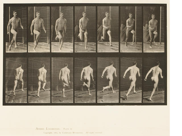 Eadweard Muybridge (British, 1830-1904); from Animal Locomotion, Pl. 66; 291; (2)