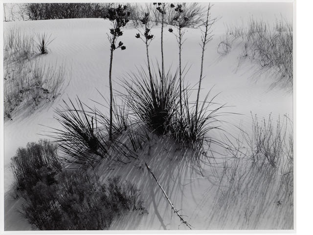 Brett Weston (American, 1911-1993); White Sands, New Mexico;