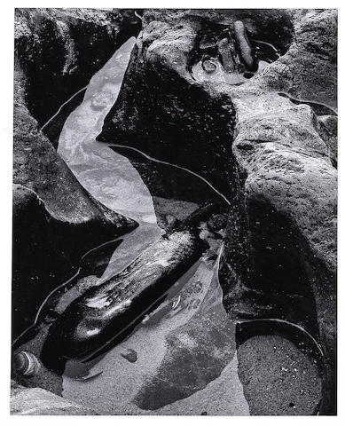 Brett Weston (American, 1911-1993); Tide Pool, Oregon;