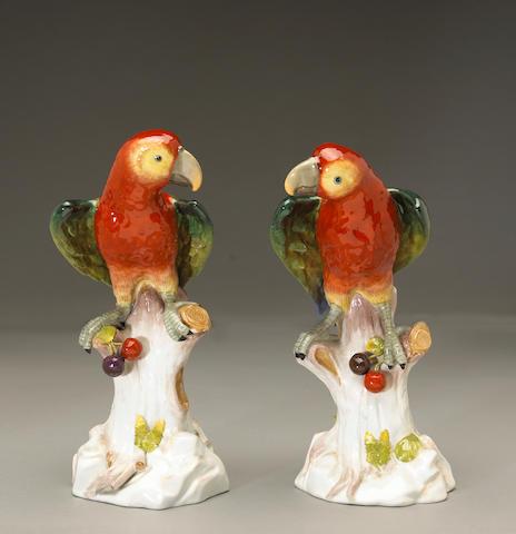 A pair of Dresden porcelain models of parrots
