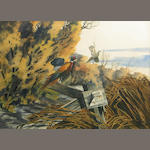Bruce Lattig, Pheasants, w/c, 15 x 21in.