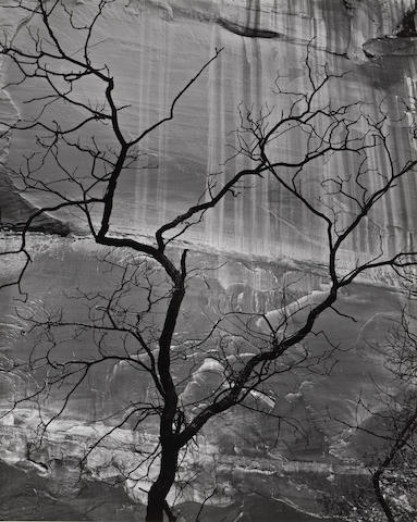 Brett Weston (American, 1911-1993); Glen Canyon;