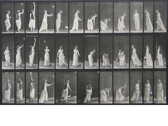 Eadweard Muybridge (British, 1830-1904); from Animal Locomotion, Pl. 463;
