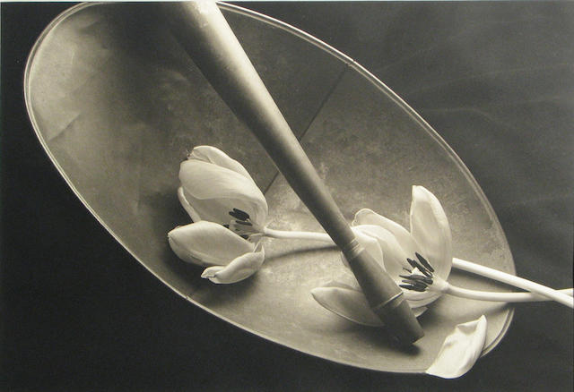Kenro Izu (Japanese/American, born 1949); Still Life #62;