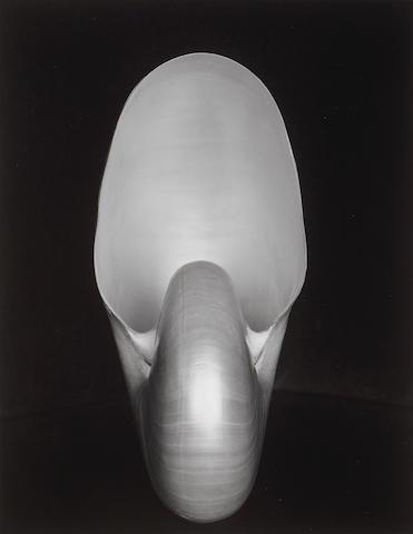 Edward Weston (American, 1886-1958); Nautilus;